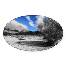 Landscape photography Decal