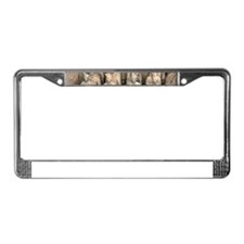 Terracotta Army, China. License Plate Frame