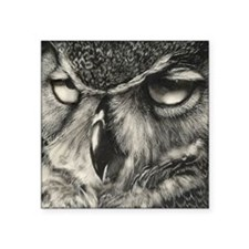 "Owl Square Sticker 3"" x 3"""