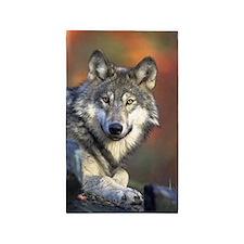 Wolf 024 Area Rug
