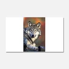 Wolf 024 Car Magnet 20 x 12