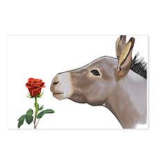 Mini donkey smelling a long stem red rose Postcard