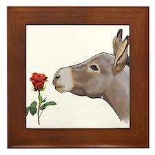 Mini donkey smelling a long stem red rose Framed T
