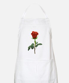 long stem red rose for valentines day Apron