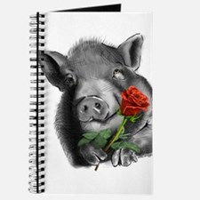 lucy the wonder pig with a long stem red rose for