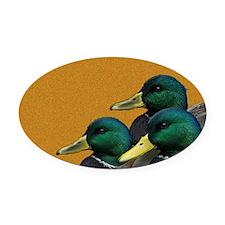 Mallards Oval Car Magnet
