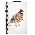 Bobwhite Cock Journal