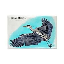 Gray Heron Rectangle Magnet