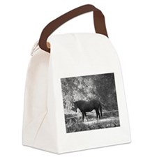 Zo! Canvas Lunch Bag
