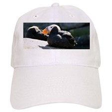 Tufted Puffins Baseball Cap