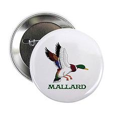 """Mallard 2.25"""" Button (10 pack)"""