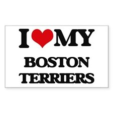 I love my Boston Terriers Decal