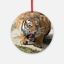 Tiger_2015_0156 Ornament (Round)