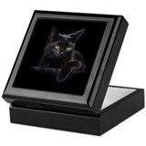Black cat Square Keepsake Boxes