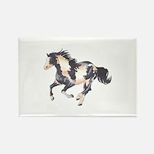 PAINT HORSE Magnets