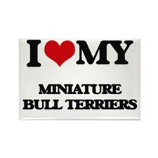 I love my Miniature Bull Terriers Magnets
