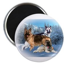 Luke Lizzie and Pup Magnet