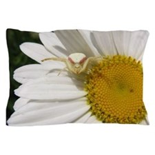 Goldenrod Crab Spider On Daisy Pillow Case