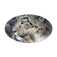Leopard002 Oval Car Magnet