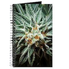 Kush Bud Journal
