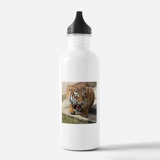 Tiger_2015_0156 Sports Water Bottle