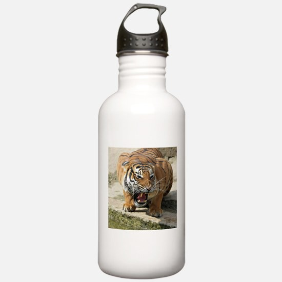 Tiger_2015_0156 Water Bottle