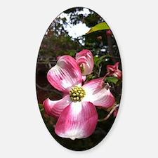 Dogwood Blossom Sticker (Oval)