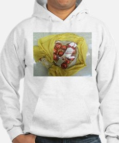 Russell Stover Heart Yellow. Hoodie