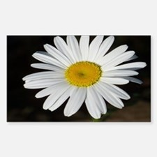 White Daisy Decal
