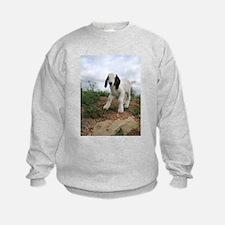 Cute Baby Goat Sweatshirt