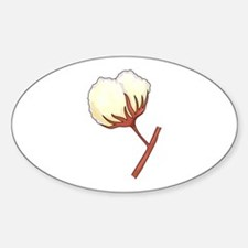 COTTON BOLL Decal