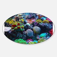 Beautiful Coral Reef Decal