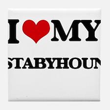 I love my Stabyhoun Tile Coaster