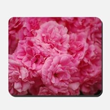 Pale pink roses Mousepad