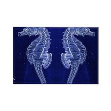 beach blue seahorse Magnets