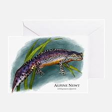 Alpine Newt Greeting Card