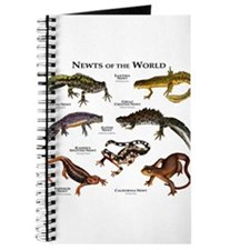 Newts of the World Journal