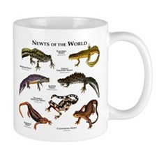 Newts of the World Small Mugs