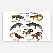 Newts of the World Sticker (Rectangle)
