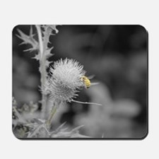 Bee and Thistle Mousepad