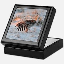 Sharptail Grouse Keepsake Box