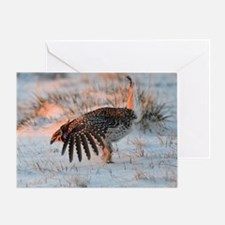 Sharptail Grouse Greeting Card
