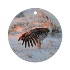 Sharptail Grouse Round Ornament