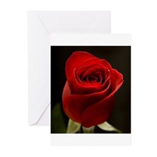 Unique Red flower Greeting Cards (Pk of 20)