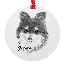 Gizmo Ornament