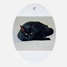 Black Cat! Ornament (Oval)