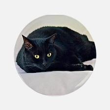 """Black Cat! 3.5"""" Button"""