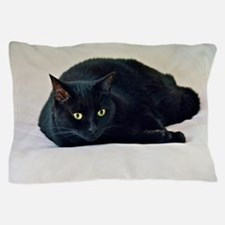 Black Cat! Pillow Case