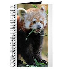 Red Panda 005 Journal