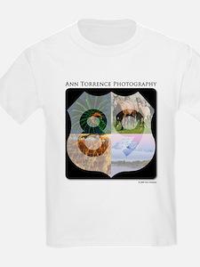Highway 89 T-Shirt